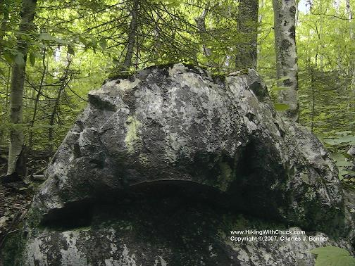 Boulder that looks like a giant toad