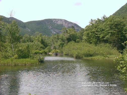 Mount Willard seen from Willey Pond